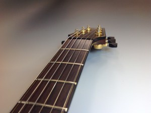 Custom Made Guitar by Rick Maguire